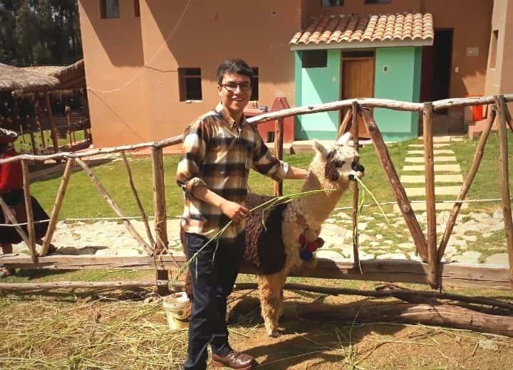 alpaca shop-min